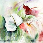 Zantedeschia (17) / Watercolour 30x40cm / insp. Fabio Cembranelli