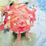 Rose abstrakt (O2) / Watercolour 18x24cm