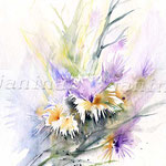 Flowers V 2010 (8)  / Watercolour 24x32cm / insp. Veronique Piaser-Moyen  © janinaB.
