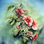 Hängepetunien (18) / Watercolour 30x40cm