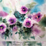 Petunias I 2018 / 30x40cm (22) / Watercolour by ©janinaB.