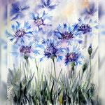 Cornflower I 2018 (20) / 30x40cm Watercolour by ©janinaB.