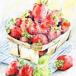 Erbeeren (12) / Watercolour 30x40cm