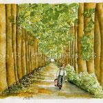 Rotkäppchen (O2) / Watercolour 17x23cm