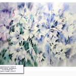 delphinium I 2017 / Watercolour 30x40cm on Arches CP © janinaB. 2017