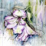 Flowers VII (20) / Watercolour 30x40cm / insp. Fabio Cembranelli