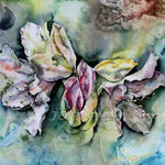 Flower IV 2012 (8) / Watercolour 30x40cm