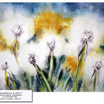 Dandelions II 2017 (O1)/ Watercolour 20x15cm on Arches CP ©janinaB.2017