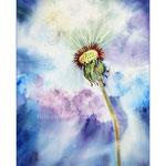 Pusteblume~ (25) / Watercolour 30x40cm