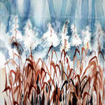 grasses / Watercolour 20x30cm on Fabriano CP  © janinaB. 2016