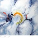 Iris V 2018 / 30x40cm / (22) / Watercolour by ©janinaB.