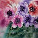 Anemones III 2018 (21) / 30x40cm Watercolour by ©janinaB.