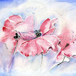 Poppies IV 2010 (O1) / Watercolour 18x25cm / insp. Kate Kos  © janinaB.