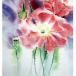 Poppies I 2017 (O1) / Watercolour 20x30cm on Fabriano CP © janinaB. 2017