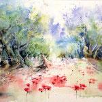 Mohnfeld und Olivenhain (11) / Watercolour 30x40cm