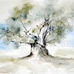 Baumstudie_Aquarellskizze (16) / Watercolour 24x31cm ©janinaB.