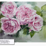 Roses III 2017 / Watercolour 30x40cm on Arches CP © janinaB. 2017