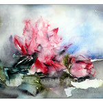 rote Rosen 2012 (22) / Watercolour 24x34cm