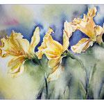 Osterglocken III (17) / Watercolour 21x29cm