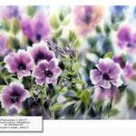 Petunias I 2017 / Watercolour 30x40cm on Arches CP © janinaB. 2017