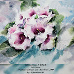 Gloxinia I 2018 (O1) / 20x30cm Watercolour on Arches HP by ©janinaB.