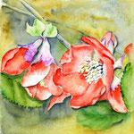 kleine-Schönheiten-(5) / Watercolour 25x25cm  © janinaB.