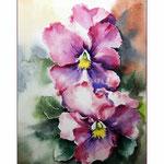 Veilchen (17) / Watercolour 20x30cm