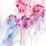 Sweet pea (8)  / Watercolour 24x32cm