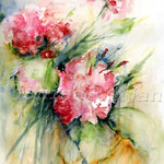 Pelargonien (5) / Watercolour 30x40cm / insp. Fabio Cembranelli