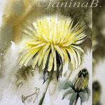 Dandelion V 2018 / 15x20cm (O3) / Watercolour by ©janinaB.