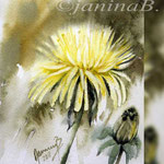 Dandelion V 2018 (O1) / 15x20cm / Watercolour by ©janinaB.