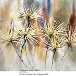 Flowers VIII 2018 / 30x40cm / (22) / Watercolour by ©janinaB.
