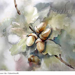 Acorns I 2018 (25) / 30x40cm / Watercolour by ©janinaB.