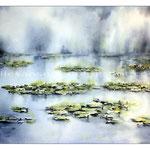 Seerosenteich (T2) / Watercolour 31x41cm