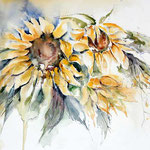 Sunflowers III 2011 (12) / Watercolour 30x40cm
