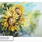 Sunflowers VI 2017 (19) / Watercolour 30x40cm © janinaB. 2017