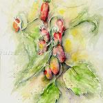 San Marzano (7) / Watercolour 30x40cm