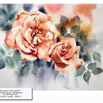 Roses VIII 2017 (9) / Watercolour 30x40cm on Arches CP © janinaB. 2017