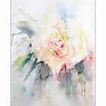 Rose abstrakt 2013 (22) / Watercolour 24x31cm