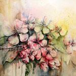 Apfelbaumblüten (T1) / Watercolour 36x48cm