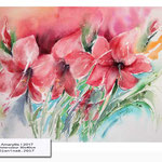Amaryllis I 2017 (20) / Watercolour 30x40cm © janinaB. 2017