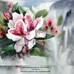 Rhododendron II 2018 (21) / 30x40cm Watercolour by ©janinaB.