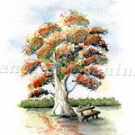 Buche im Herbst (O6) / Watercolour 17x23cm ©janinaB.