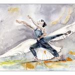 Albatros (16) / Watercolour  30x40cm