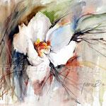 anemone-japonica (15) / Watercolour 30x40cm / insp. Fabio Cembranelli