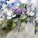 Hydrangea IV 2018 (21) / 30x40cm Watercolour by ©janinaB.
