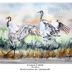Cranes I 2018 (20) / 30x40cm Watercolour by ©janinaB.