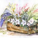 Still-life-I-2009 / Watercolour 30x40cm / nicht verfügbar
