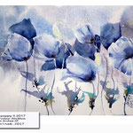 Blue poppy II 2017 (O2) / Watercolour 20x30cm on Arches CP © janinaB. 2017