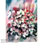 Hydrangea IX 2018 / 30x40cm / (22) / Watercolour by ©janinaB.